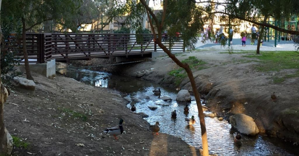 Turtle Rock Community Park City Of Irvine
